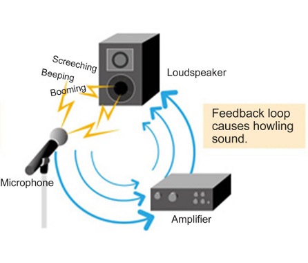 acoustic_feedback_mechanism