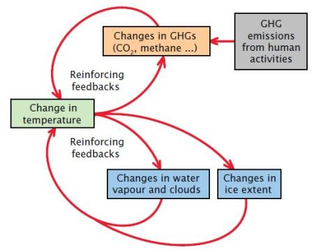 Feedbacks-CSIRO
