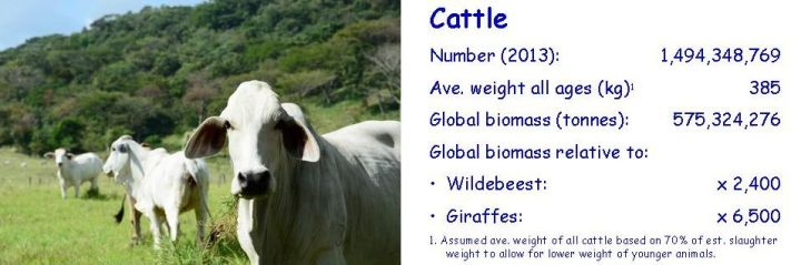 Biomass-comparison-cow-2-cropped